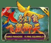 Bird Paradise Jokergaming123
